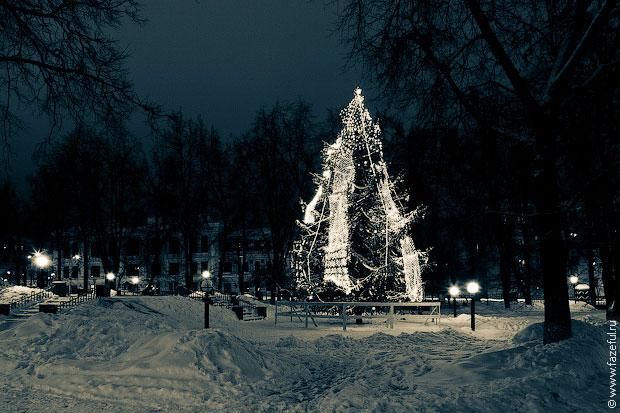 Калужские елки