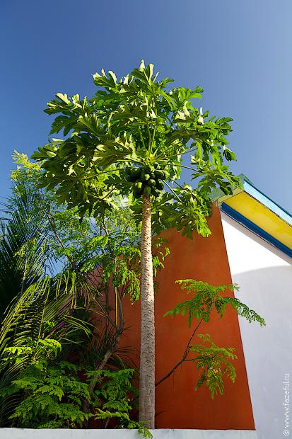 Мальдивская деревня